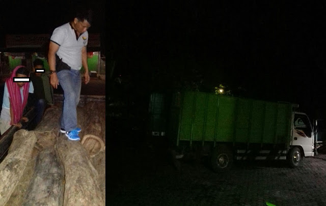 3 Truck Kayu Diduga Hasil Ilegal Loging Diamankan TNI