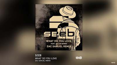 Seeb - What Do You Love ft. Jacob Banks ( Zac Samuel #Remix )