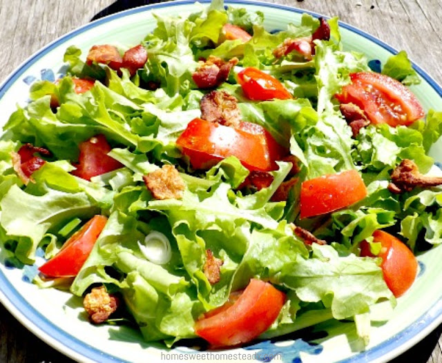 BLT Salad: Home Sweet Homestead
