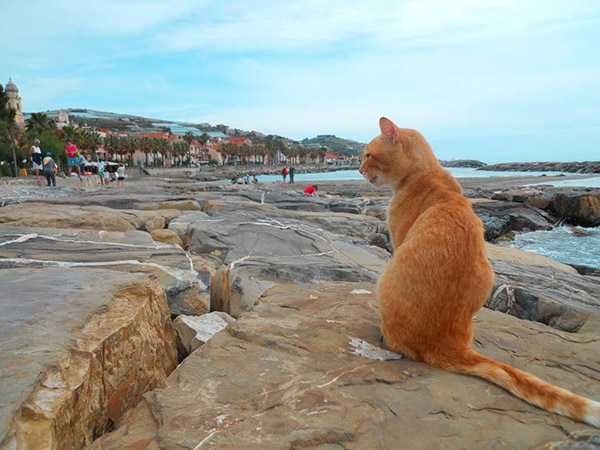 riva ligure beach