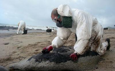 Biorremediación menos contaminación