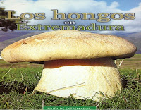 los-hongos-en-extremadura