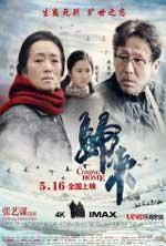 Regreso a Casa (2014) DVDRip