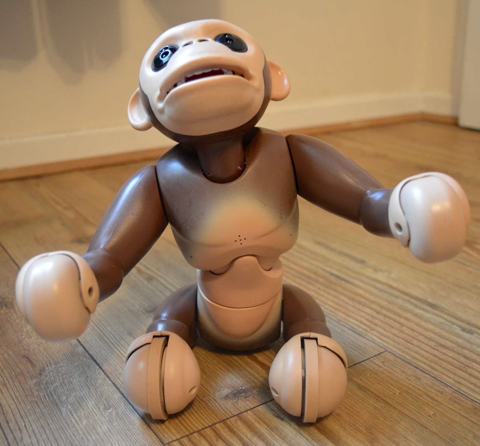 Zoomer Chimp Review | sitting