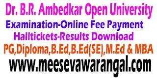 Dr. B.R. Ambedkar Open University Eligibility Test  (BRAOU)