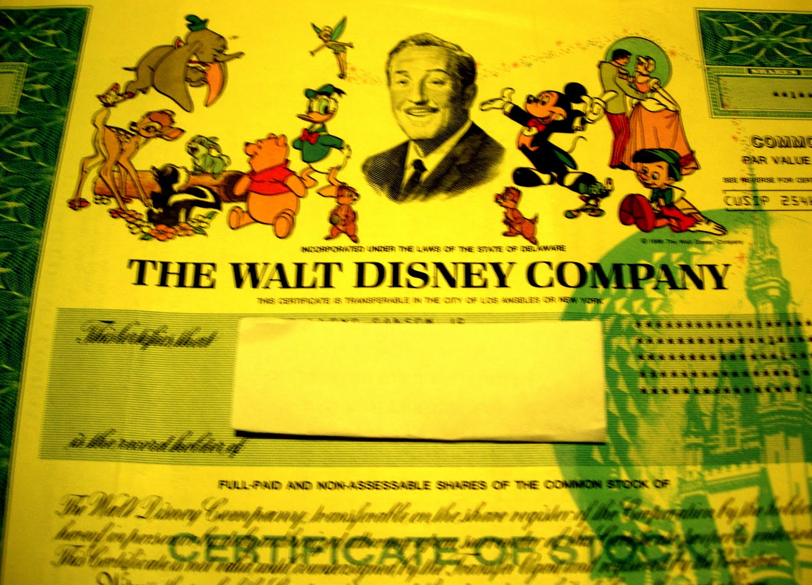 My Magical Collection Stock Certificate For The Walt Disney Company