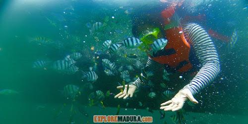 snorkeling wisata gili labak