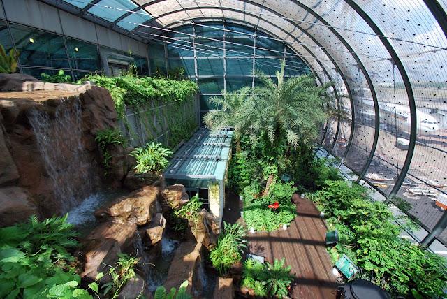 Butterfly Garden Aeropuerto de Singapur