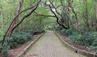 http://www.teluklove.com/2017/04/pesona-keindahan-wisata-hutan-kota_20.html