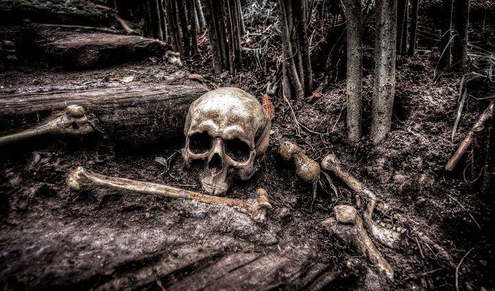 dead humans