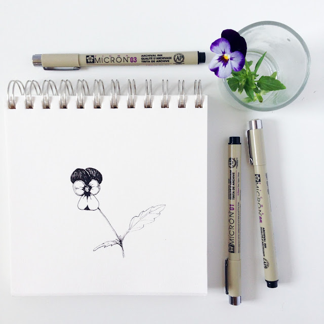 sketchbook, Getting Started in a Botanical Sketchbook, Skillshare, botanical sketchbook, Anne Butera, My Giant Strawberry