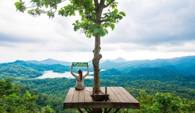 Destinasi Wisata Jogja Desa Wisata Kalibiru