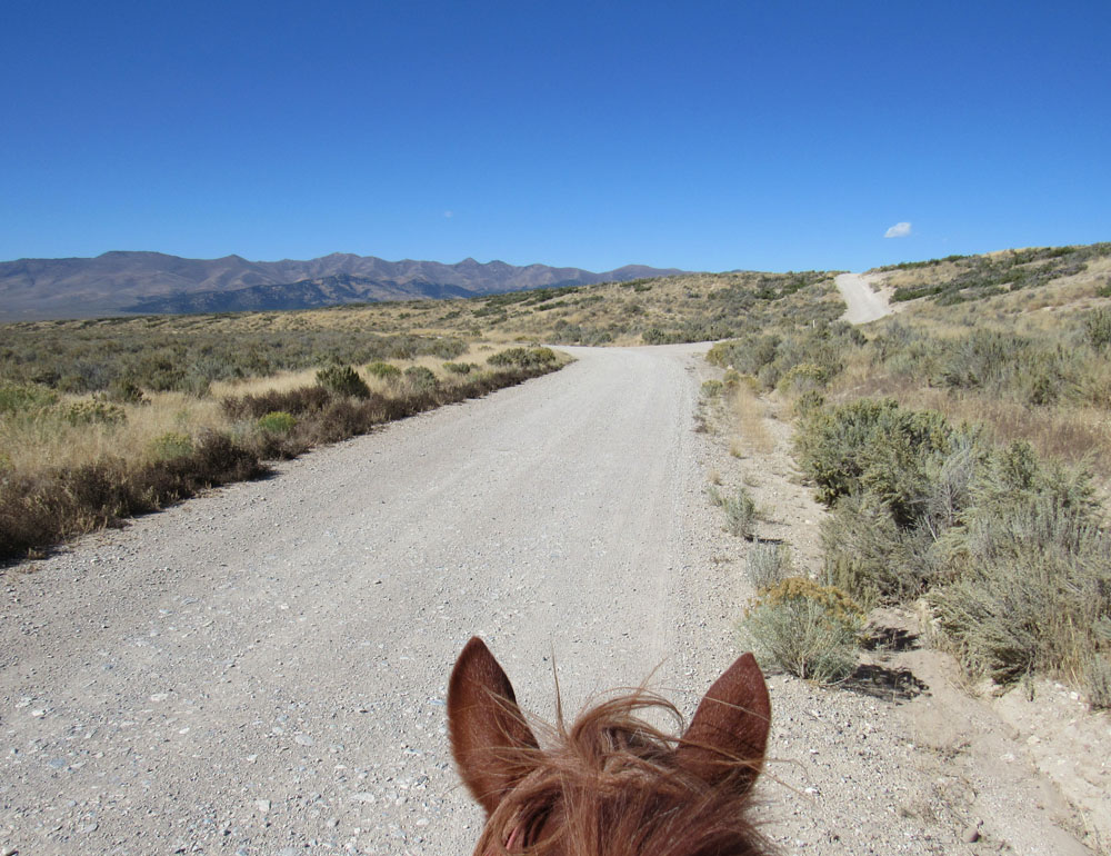 The Long Horse Ride Blog Over Overland Pass