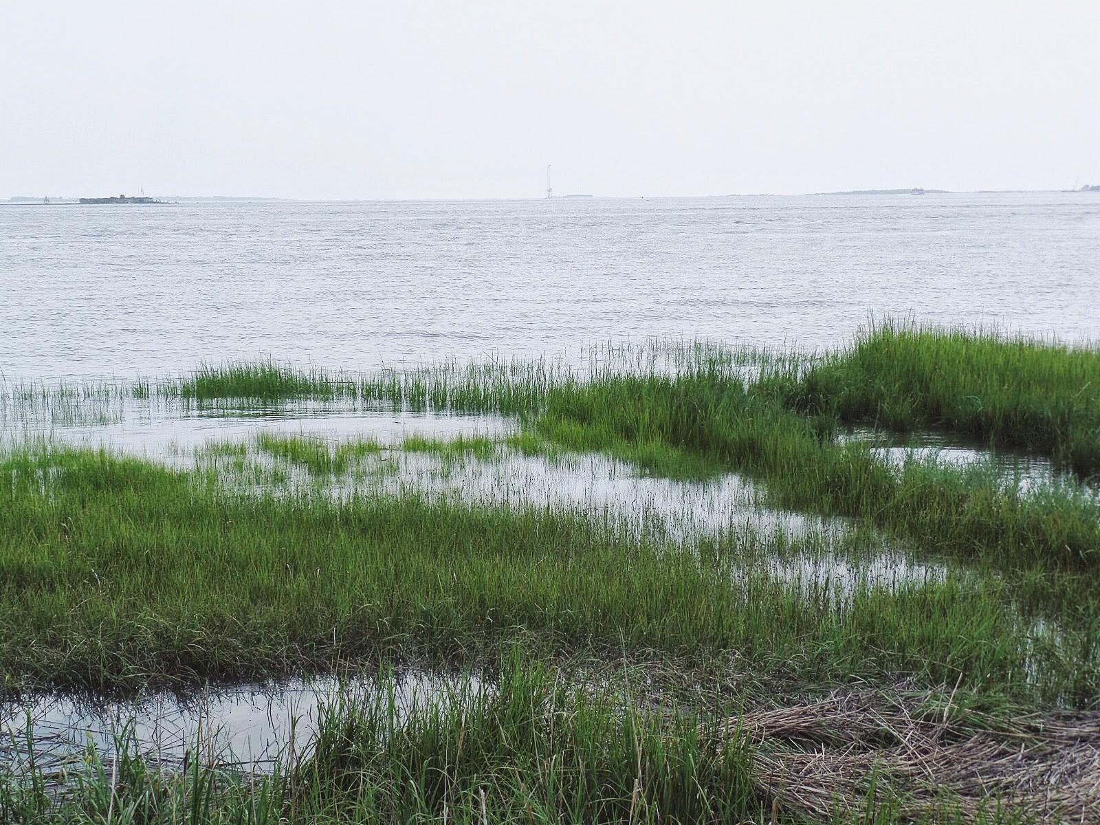 Charleston Waterfront Park, Charleston Waterfront, Charleston Harbor, Charleston South Carolina
