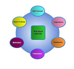Andragogy a set of assumptions about adult learners