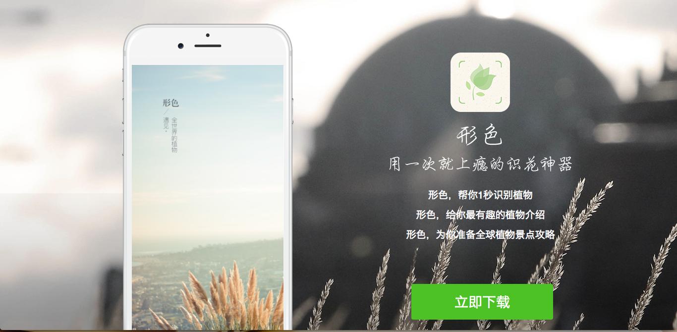 形色:一秒辨識四千種花草植物,最聰明又有詩意的賞花 App