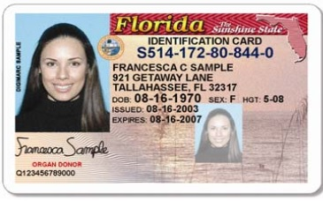 Issuance Driver's Proposal Centralize Florida Defeated To License