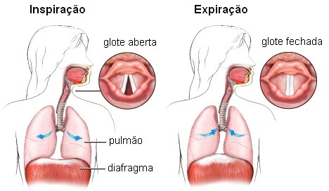 Fluxo da dor torácica no atendimento pré hospitalar da grande florianópolis sc com laudo de ecg em tempo real 6