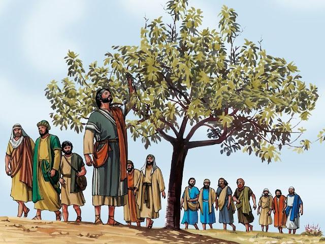 Pohon Ara Dikutuk Tuhan Yesus