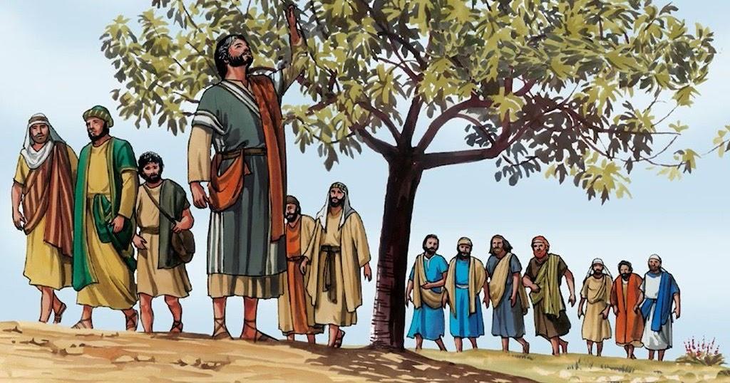 3 Alasan kenapa Pohon Ara Dikutuk Tuhan Yesus - hidupkasih.com