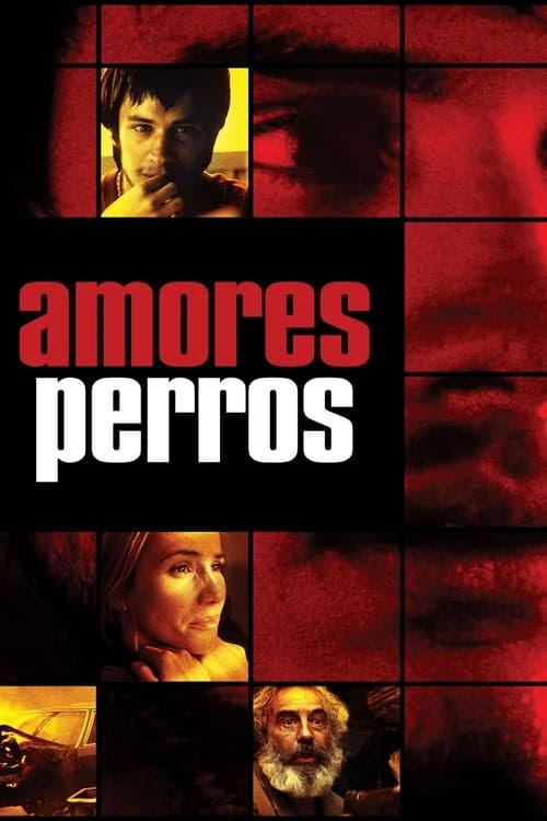 Hd Amores Perros 2000 Ver Online Subtitulado Pelicula Completa