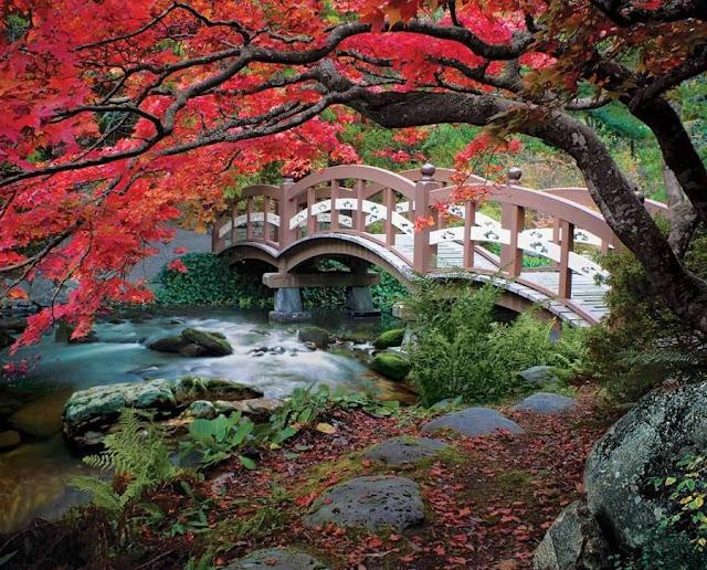 vadide köprü