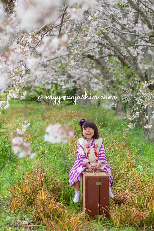千葉 七五三 フォトスタジオ 撮影 出張 子供 ロケーション 記念写真 前撮り 後撮り