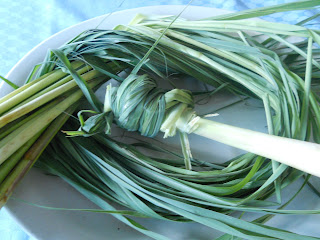lemongrass, lemon grass, tanglad