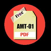 AMT-01