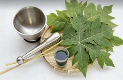 Paket Herbalife yang Boleh Diminum untuk Ibu Menyusui dan Ibu Hamil