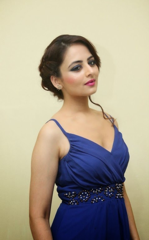 Actress Zoya Afroz Picture Gallery in Blue Long Dress  11.jpg