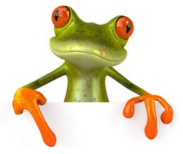 Book Illustration: My Crazy Pet Frog