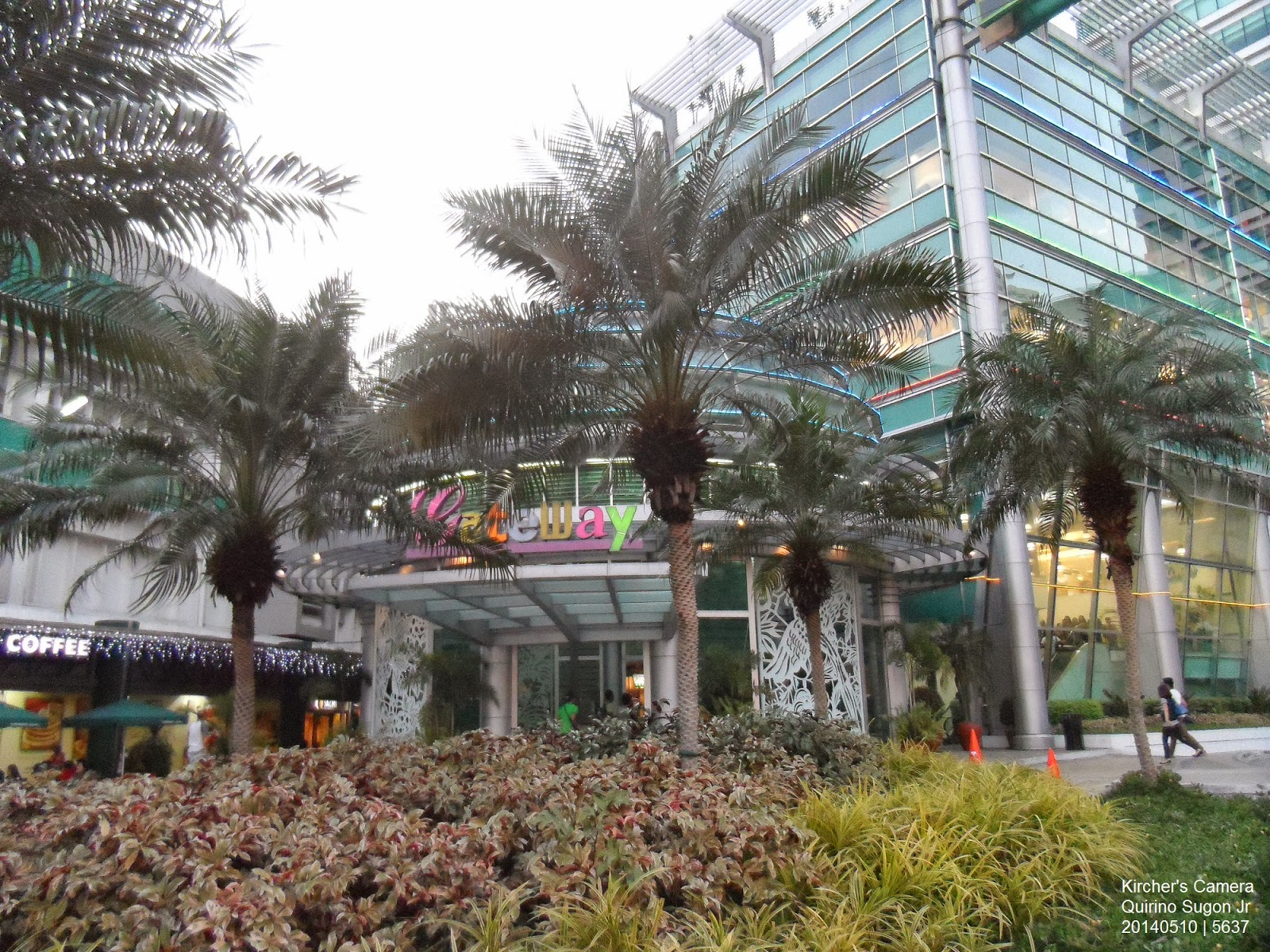 Three palms in front of Gateway Mall's main entrance. Actually there is a  fourth palm, but the three palms provide a strong anchor to the image.