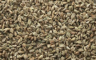 Top 10 Health and Medicinal benefits of Ajwain (Carom seeds)