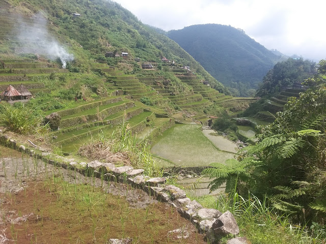Rice Terraces of Pat-yay Village