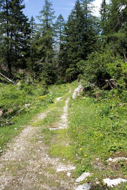 Zweitägige Wanderung von der Gsollkehre in Eisenerz über die Gsollalm zum Brandstein und weiter über Fobisalm und Hinterseeau zum Leopoldsteinersee - Hinterseeau