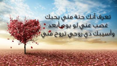 اروع الحكم في الحب