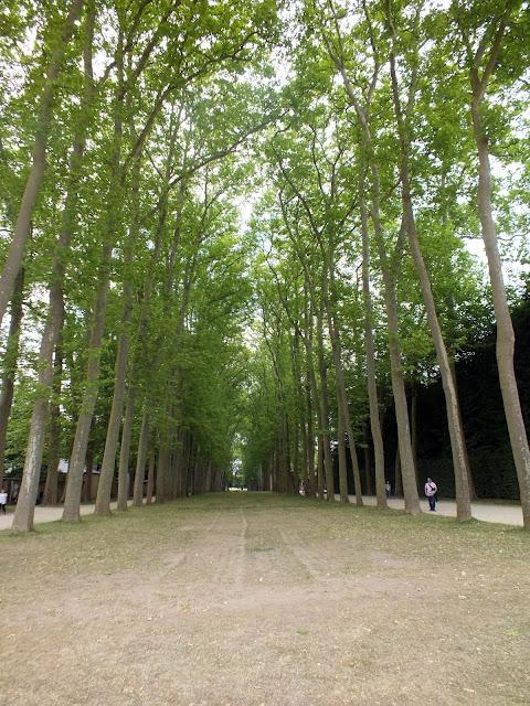 bosque del Palacio de Versalles