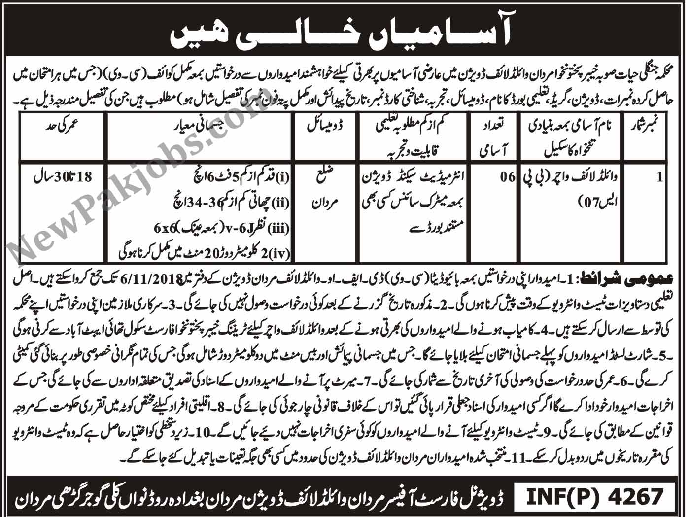 Intermediate Jobs in Mardan, Wildlife Watcher