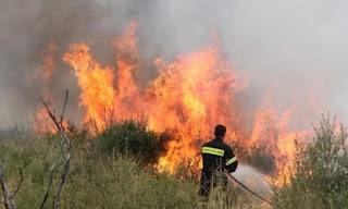 Ηλεία: Φωτιά σε δασική έκταση μεταξύ Στρέφι- Σμίλα