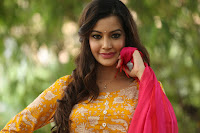 HeyAndhra Deeksha Panth Latest Photo Shoot HeyAndhra.com
