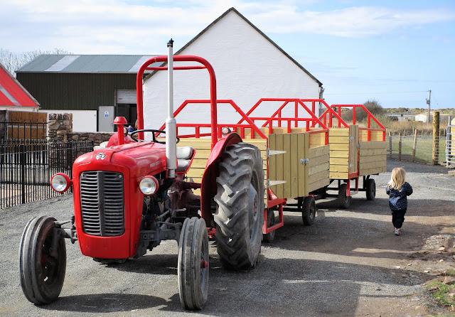 punainen traktori, Sandy feet farm
