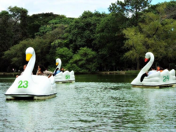 Lago dos Pedalinhos, na Redenção, em Porto Alegre