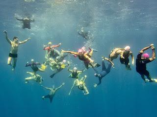 http://www.tropicallight.com/swim1/13mar16sm/13mar16sm.html