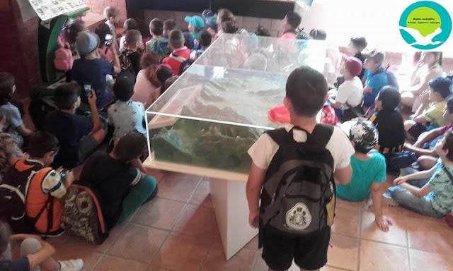 Στο κέντρο πληροφόρησης Αχέροντα βρέθηκε το δημοτικό σχολείο Λούρου