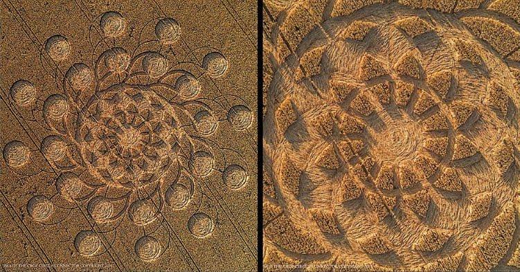 E' apparso un'altro incredibile Crop Circle nel Regno Unito - FOTO.