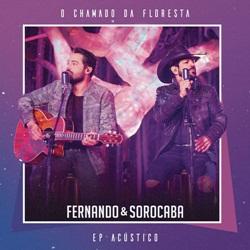 Baixar EP Acústico O Chamado da Floresta - Fernando e Sorocaba 2019 Grátis