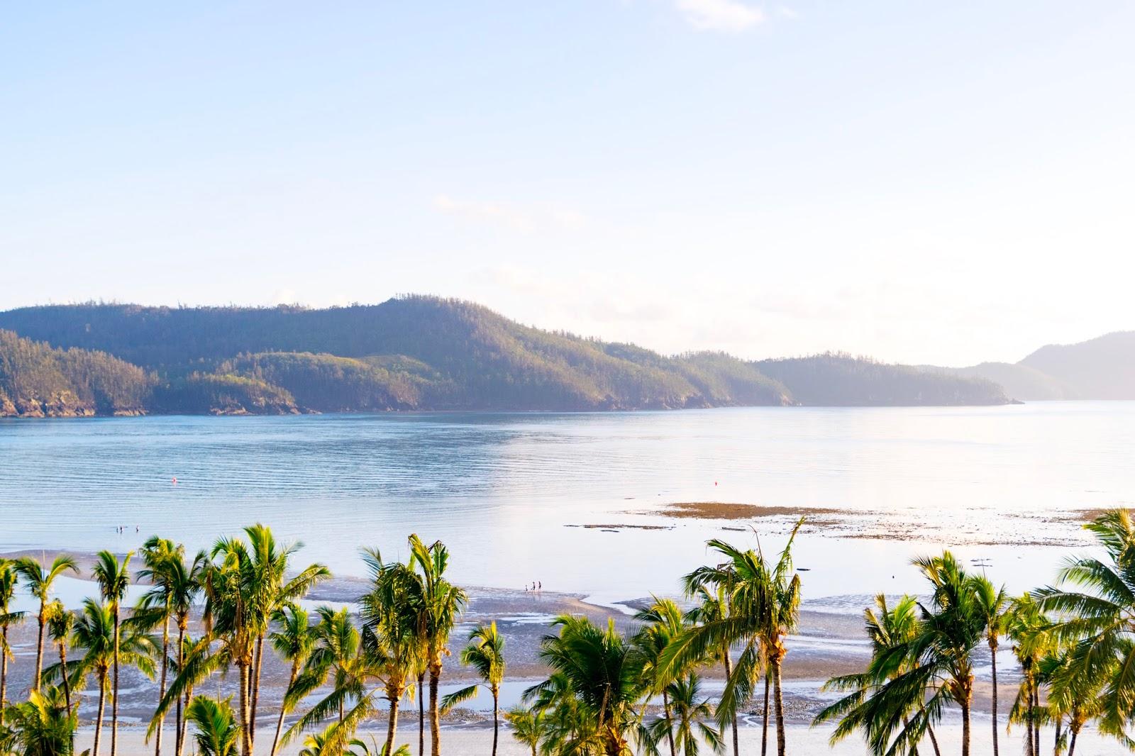 hamilton island views