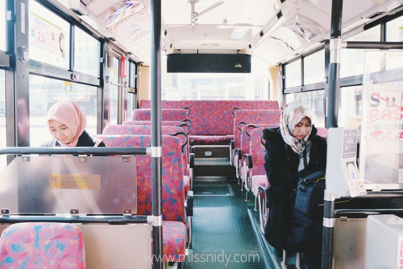 pengalaman naik bus umum ke hitachi seaside park