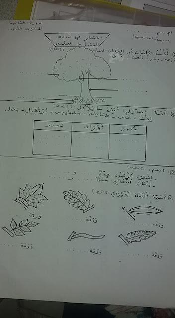 نماذج امتحانات المستوى الثاني للوحدتين 5و 6 المرحلة الثالثة